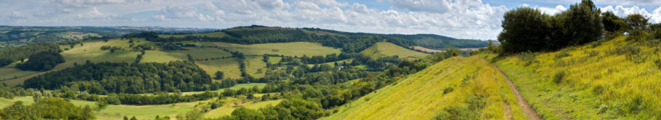 View across green field and woodland from the Cotswold escarpment